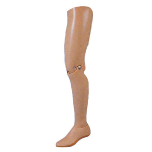 Protesis-Concencional-Arriba-Rodilla